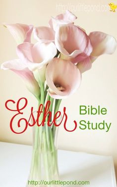 Esther Bible Study. Unpacking the concepts in Esther, Chapter one. Full Bible study on the book of Esther over the next 8 weeks. #Biblestudy #devotion