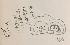 OnigiriのNekoとNoriのPenguin Cute Penguins, Universe Art, Illustrations And Posters, Kawaii, Illustrations Posters