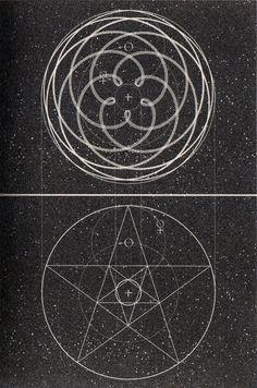 Kiss of Venus. A little book of coincidence - John Martineau