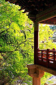 South Korea, Gyeongju, Bulguk-sa, buddhist temple, autumn foliage,.