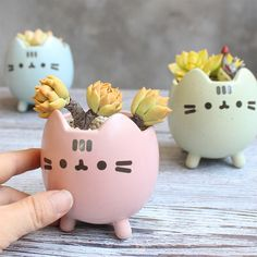 Our adorable, Kitty Planter Pot would make a perfect gift for the cat/animal lover in your life.these cute and quirky, Kitty Planter Pots may be exactly what you've been looking for! Small Succulents, Succulent Pots, Planting Succulents, Succulent Containers, Container Plants, Container Gardening, Cat Plants, Potted Plants, Small Plants