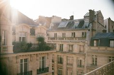 triflingthing: morning light in my Paris apartment (35mm)