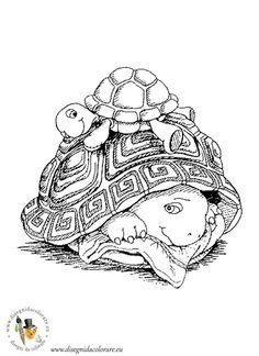 franklin_disegni_da_coloare_43.jpg - disegni da colorare dei cartoni animati