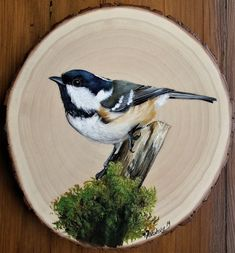 Wood Painting Art, Pallet Painting, Pallet Art, China Painting, Stone Painting, Wood Art, Wood Wood, Bird Pictures, Pictures To Paint