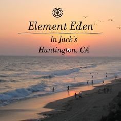 Find your favorite Element Eden ourfits at Jack's Surfboards in Huntington Beach, CA #elementeden #livelearngrow @elementeden >>> http://us.shop.elementeden.com/w/womens/new-arrivals