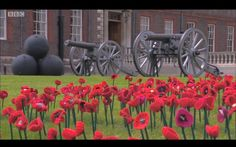 Chelsea Flower Show 2016 (knitted poppies)