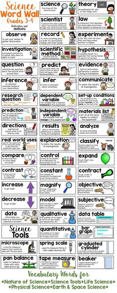 Science Word Wall for Grades 3-4