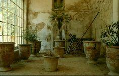 #serre #ruines #château #lamignarde #Provence