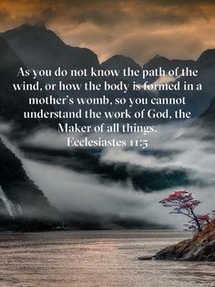 Ecclesiastes As you do not know the path of the wind, or how the body is formed in a mother's womb, so you cannot understand the work of God, the Maker of all things. Prayer Scriptures, Bible Prayers, Faith Prayer, Prayer Quotes, Faith In God, Spiritual Quotes, Inspirational Bible Quotes, Bible Verses Quotes, Soli Deo Gloria