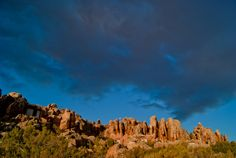 Kagga kamma beauty