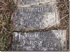 Caroline Family Roots - Tombstone Tuesday - Hardy Huntley Sellers #genealogy