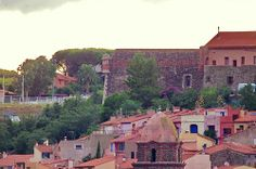 Collioure 24 le fort