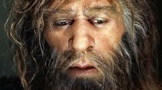 Many of the genes that help determine most people's skin and hair are more Neanderthal than not, according to two new studies that look at the DNA fossils hidden in the modern human genome.