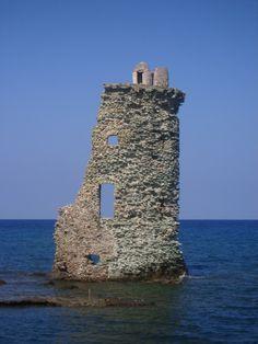 Maccinaggio, Corse
