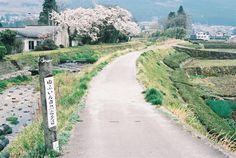 hachimitsu:  湯布院町 (by Gracia Chua Min Yi)