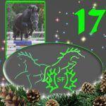 Türchen+17+-+Ein+Sprung+zurück+in+den+Dezember+2009