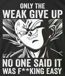 It's just true Dragon Ball Z, Goku Dragon, Manga Dragon, Dragon Ball Image, Dbz Quotes, Motto Quotes, Life Quotes, Miguel Angel, Thoughts