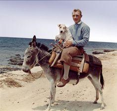 Tintin et le mystère de la toison d'or - Jean-Pierre Talbot - 1961