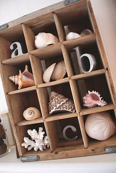 an old soda crate to create a vertical shadowbox display for your seashells and sealife.Use an old soda crate to create a vertical shadowbox display for your seashells and sealife. Seashell Crafts, Beach Crafts, Diy Crafts, Beach Cottage Style, Beach House Decor, Deco Marine, Deco Nature, Beach Room, Beach Bathrooms