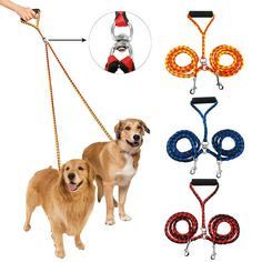 Dual Double Pet Dog Leash for Two Dogs. 1 X Double Dog Leash. swivel hook effectively prevents the leashes from intertwining. Designed at the perfect length to make walking 2 dogs freedom. Two Dogs, Small Dogs, Dog Harness, Dog Leash, Le Plus Grand Chien, Half Moon Bay, Cairn Terriers, Free Dogs, Dog Boarding