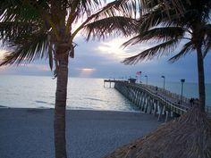 Venice, FL : The beaches of Venice Florida photo, picture, image ...