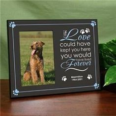 Losing a family pet is hard to go through alone. Cherish their lives with these beautiful Pet Memorial Personalized Picture Frames. All Customized Picture Frames are personalized FREE and ship FAST! Pet Memorial Frames, Pet Memorial Gifts, Dog Memorial, Memorial Ideas, Pet Remembrance, Personalized Picture Frames, Sympathy Gifts, Pet Loss, Pet Memorials