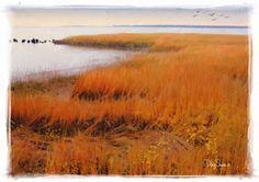 Charleston Marsh in November 12x17 by Creatography on Etsy, $48.00