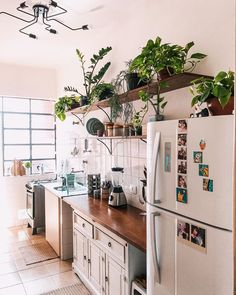 Look at kitchen full of small plants. Too beautiful not to … Interior Exterior, Kitchen Interior, Kitchen Dining, Kitchen Decor, Boho Home, Home And Deco, Handmade Home, Decoration, Interior Inspiration