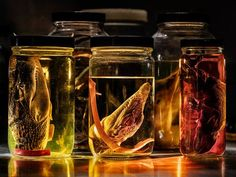 National Geographic sur Instagram: Photo by @paoloverzone / Rows of alcohol-filled jars preserve anatomical specimens in WitmerLab, run by Lawrence Witmer, a paleontologist… La Danse Macabre, National Geographic, Preserve, The Row, Jars, Alcohol, Instagram, Chow Chow, Rubbing Alcohol
