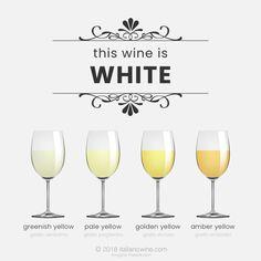 Wine tasting terms: tones of white wine Italian Wine, Wine Tasting, White Wine, Wine Glass, Alcoholic Drinks, White Wines, Alcoholic Beverages, Wine Bottles