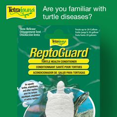Are you familiar with turtle diseases? Add Tetrafauna® ReptoGuard™ Health Conditioner solution to you turtle-keeping toolset. This lovely little solution fights disease-causing organisms, including salmonella. Tetra Fish, Reptiles, Conditioner, Personal Care, Health, Salud, Hair Conditioner, Turtle, Self Care