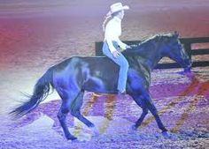 I hope to one day try freestyle reining on my own horse.