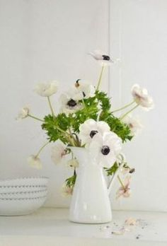 ...white anemones...black centers...so cool!