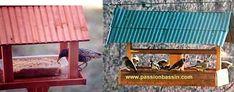 Faire une mangeoire et un nichoir pour oiseaux ! Garden Bird Feeders, Decor, Homemade Bird Feeders, Nesting Boxes, Home Made, Lawn And Garden, Decoration, Decorating, Deco