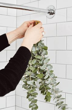 zen Bathroom Decor Life Hack: Put a Bunch of Eucalyptus In Your Shower Zen Bathroom Decor, Bathroom Shelves, Bathroom Styling, Bathroom Interior Design, Bathroom Ideas, Bathroom Wall, Indoor Plants For Bathroom, Master Bathroom, Bathroom Flowers