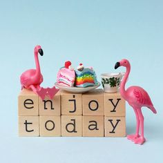 Enjoy today! #aflamingoaday #enjoy #today #flamigo #enjoytoday #cake #sweets #coffee #flamingofun #friends #love #happycolors #rainbow