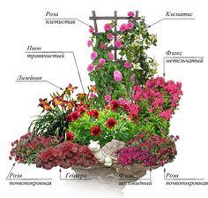 Small Garden Design Ideas Low Maintenance, Back Garden Design, Garden Design Plans, Backyard Garden Design, Creative Landscape, Landscape Design Plans, Landscape Sketch, Backyard Hill Landscaping, Flower Garden Plans