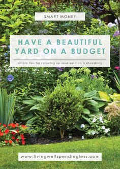 Think having a fancy yard is only for rich people?  Think again!  While you might not be able to afford a professional landscaper, there