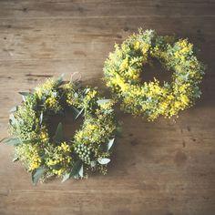 dryflower_066