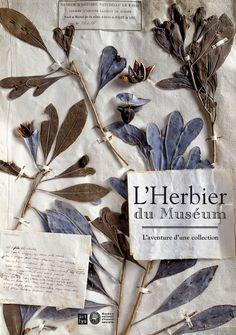 Couverture de l'ouvrage L'Herbier du Muséum