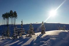 Immaculate Fresh Snow in Lapland ❄️ We are going to this amazing place in January to hunt Aurora Borealis (darkness time) and in February for an adventurous multiple day husky safari, have a look on our website (link in our bio and then Upcoming Adventures) #lapland #finland #aurora #auroraborealis #magical #adventure #winter #snow #sun #huskies #snowmobile #snowshoes #wild #energetic #astrological #sauna #massages #activities #free #spirit #nature #naturelovers #travel #travelers…