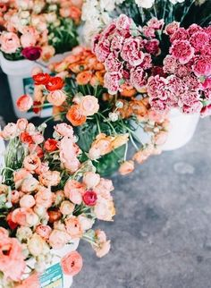 Ariella Chezar is a floral designer, co-owner of Ariella New York a flower shop, stylist and grower of sustainable flowers. May Flowers, Fresh Flowers, Beautiful Flowers, Exotic Flowers, Purple Flowers, Spring Flowers, Spring Blooms, Flower Market, Flower Shops
