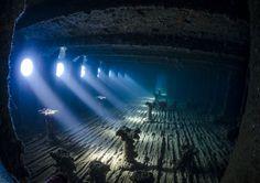 Underwater Photographer of the Year Winners Show Aquatic Beauty Across the Globe