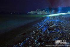 【福建現藍眼淚奇觀 如置身《阿凡達》】  福建海灘夜現藍光點,奇幻堪比阿凡達。(翻攝自海峽都市報)
