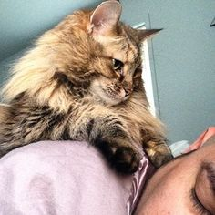 """""""Noticed you were still sleeping. That's weird."""" 