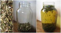 Making an Herbal Daily Vitamin Infusion