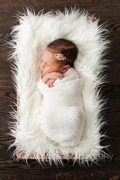 newborn in basket. Pam Lägger Photography