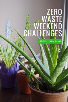 Zero waste challenges to try this weekend - Green Indy Blog