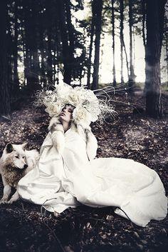 Photographer: Sonja Saur