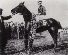 Exterminator after winning the Kentucky Derby on May 11, 1918. Exterminator ran in 99 races and won $252,996, the equivalent of more than $3 million today. He was twice voted Horse of the Year, and appeared in Life, Vanity Fair, and a Hollywood movie.